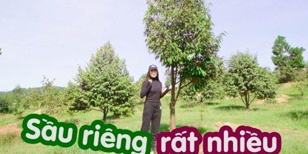 """Trà Ngọc Hằng hé lộ """"tài sản"""" quý giá trong Vlog mới"""